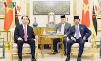 Chủ tịch nước Trần Đại Quang hội đàm với Quốc vương Brunei