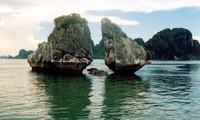 ๒๐ ปีที่เวียดนามอนุรักษ์มรดกวัฒนธรรมโลก