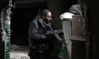 Ceasefire observed well in Syrian provinces