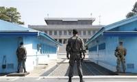 North and South Korea destroy border guard posts