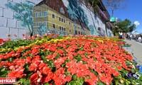 Da Lat - city of thousands of flowers