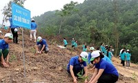 PM gives green light to 1-billion-tree growing project