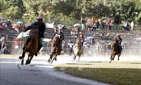 Traditional horse race recognised as national intangible heritage