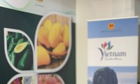 Vietnamese fruits showcased at Macfrut 2021 in Italy