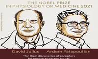 Americans Julius and Patapoutian win 2021 Nobel Prize in Medicine