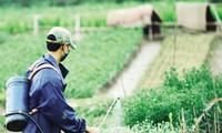 รัฐสภาอนุมัติร่างกฎหมายป้องกันและกักกันโรคพืชและร่างกฎหมายการรับเรื่องร้องทุกข์