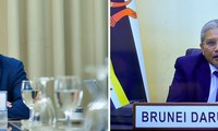 Вьетнам и Бруней договорились взаимодействовать для укрепления центральной роли АСЕАН