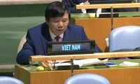 Вьетнам надеется на скорейшую стабилизацию положения в Мьянме