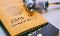 ЕС согласился ввести «ковидный» паспорт для восстановления туризма