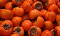 Маринованная хурма – простой осенний фрукт Ханоя