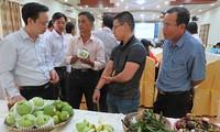 Giải pháp phát triển thương hiệu nông sản thành phố Cần Thơ