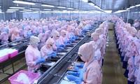 """UNDP công bố báo cáo """"Tài chính cho phát triển bền vững ở Việt Nam"""""""