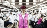 CPTPP tăng cạnh tranh trên thị trường lao động quốc tế