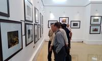 Liên hoan ảnh nghệ thuật 3 thành phố Hà Nội - Huế - Thành phố Hồ Chí Minh