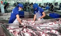 Cơ hội thuận lợi để ngành cá tra Việt Nam tiến vào thị trường Mỹ