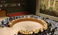 Việt Nam kiên trì nguyên tắc giải quyết tranh chấp bằng các biện pháp hoà bình