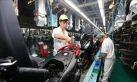 Nhật Bản: Việt Nam là điểm đầu tư triển vọng