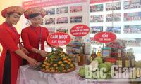Bắc Giang: Khai mạc hội chợ cam, bưởi Lục Ngạn 2019