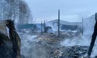 ĐSQ Việt Nam tại Nga xác minh thông tin liên quan đến người Việt thiệt mạng trong vụ cháy tại ngoại ô Moscow