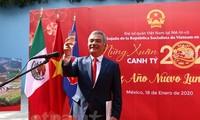 Rộn ràng không khí mừng Xuân Canh Tý 2020 của cộng người Việt tại nhiều quốc gia