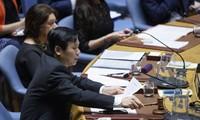 Việt Nam chủ trì Phiên họp của Hội đồng Bảo an Liên hợp quốc về tình hình Israel và Palestine
