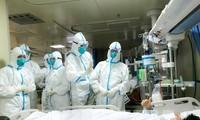 Dịch bệnh viêm phổi do virus corona: Số người tử vong lên 259