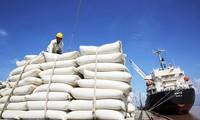 Giá gạo Việt Nam xuất khẩu cao