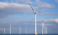 Khởi động hợp tác mới về năng lượng giữa Việt Nam và Thụy Điển