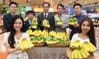Chuối Việt Nam được bày bán trong hệ thống siêu thị của Lotte Mart tại Hàn Quốc