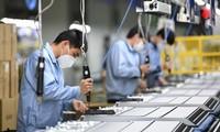 Thị trường lao động Việt Nam đang phục hồi nhanh chóng