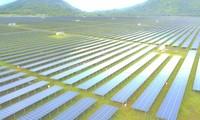 Nhà máy điện mặt trời lớn nhất ĐBSCL sắp hoàn thành