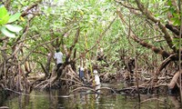 Phát triển du lịch Côn Đảo theo hướng bền vững