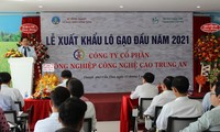 Tín hiệu vui của ngành lúa gạo Việt đâu năm mới 2021