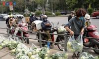 Người dân chung tay giải cứu nông sản Hải Dương