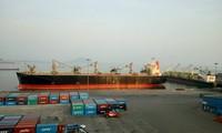 Thúc đẩy tiến độ dự án hợp tác Phát triển cảng Vũng Áng Lào - Việt