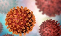 WHO sử dụng chữ cái Hy Lạp để đặt tên cho các biến thể của virus SARS-CoV-2