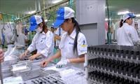 Cơ hội để doanh nghiệp Việt Nam tiếp cận thị trường khu Vịnh Lớn Quảng Đông-Hong Kong-Macau (Trung Quốc)