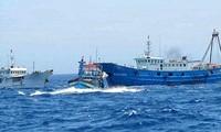 Вьетнамская рыболовецкая артель против запрета на рыболовство в Восточном море