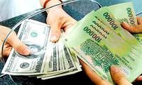 Госбанк Вьетнама обязался не регулировать курс нацвалюты