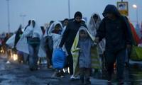 ЕС сотрудничает с Турцией с целью ограничения потока мигрантов