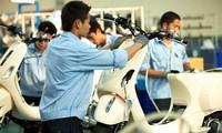 Bloomberg: Вьетнам займет второе место в мире по росту ВВП
