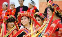 В Ханое проводится праздник «Весна во всех уголках страны»