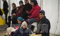 Число мигрантов, прибывших в Европу, резко снизилось в 2016 году