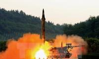 Япония и Россия обязались соблюдать резолюции Совбеза ООН о введении санкций против КНДР
