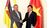 Вице-премьер, глава МИД Вьетнама встретился со вторым министром иностранных дел и торговли Брунея