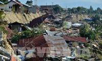 Вьетнам оказывает Индонезии помощь в ликвидации последствий землетрясения и цунами