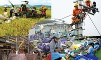 1 марта начнётся всевьетнамская экономическая перепись предприятий