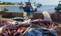 Производство блинчиков с начинкой из рубленой рыбы на острове Лишон