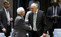 联合国安理会就叙利亚局势举行会议
