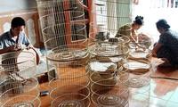 耕获村的鸟笼制作业
